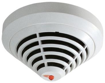Point-type Detectors